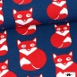 Mobile Preview: BIO Jersey Fuchs blau/rot Paapii